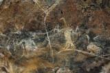 0237 Pachmarhi cave paintings 2-4.jpg