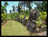 largest stone money bank on island