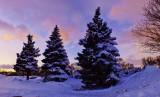 Minnesota Scenery