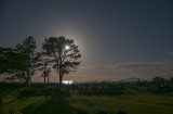 a 20 second exposure looking over the Waipu Cemetary with the rising moon behind the tree
