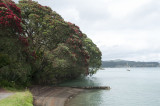 Kawhia Harbour as shot