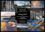Spring PhotoWorkshop in Tahoe, California