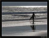 Surfing the Californian Ocean