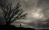 Afternoon At East Point:  Saturna Island, British Columbia (Saturna_122212_0332-1.jpg)
