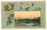 Merry Christmas From Washington  (NCpostcard_001-1.jpg)