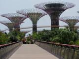 Singapore IMG_1510.JPG