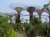 Singapore IMG_1524.jpg