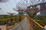 Singapore IMG_3186.jpg
