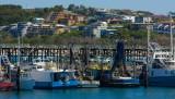Coffs Harbour NSW IMG_4359.jpg