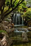 Chinese Garden of Friendship Sydney IMG_5558.jpg