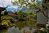 Chinese Garden of Friendship Sydney IMG_5621.jpg