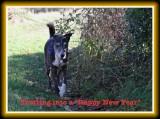 December 2012 ~ Scavenger Hunt