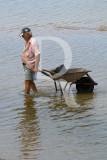 A Apanha de Marisco na Ria Formosa
