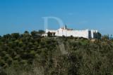 Castelo de Fontalva (IIP)