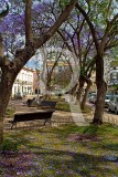 Praça Alexandre Herculano