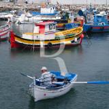 Sesimbra Doca Pesca