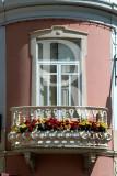 Windows of Loulé