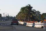 2010 - Coconut palms on W. 84th Street before widening from 3 lanes to 5 lanes from Red Road to Ludlam Road