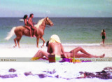 Early 1970's - does anyone remember nudes on horseback and on the beach at Dania Beach (now state park)?