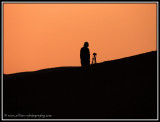 awaiting the sunrise