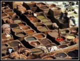 Fes - Chouara Tanneries