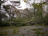 Tropical Storm Sandy hits suburban New Jersey