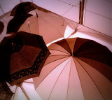 Digital Umbrellas