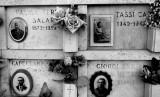 Cemetery  of my city