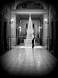 Lights Lines and Shadows of Christmas tree