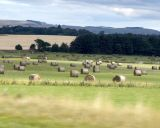 Scotland August 2006