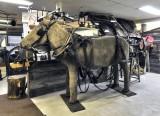 _DSC9073apb.jpg Helmar Larson's Horse