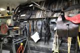 _DSC9080pb.jpg the Harness Shop