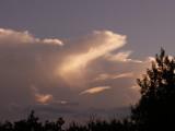 9-12-2012 Polar Bear Cloud.jpg