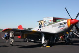 P-51 Mustang (NX61429) By ReQuest