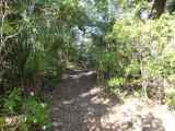 Indian Mound Park 123012 19.JPG