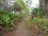 Oyster Creek Trail