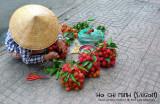SAIGON, VIETNAM (HO CHI MINH)