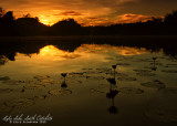 Lake Sebu sunrise