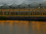 greenhouse by light