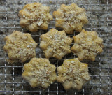 IMG_7502 Almond Cringles