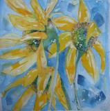 sunflower £150 SOLD