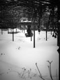 UKR_2BR5164.jpg