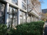 WSV Sasaki Garden & Landscape Bleak House & Pending Death