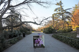 December 6, 2012 - Brooklyn Botanic Garden