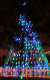 December 13, 2012 Photo Shoot - Dunedin, Clearwater, St. Peterburg, Tampa Area