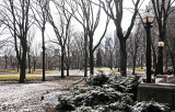 March 17, 2013 - Winter Central Park