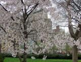 April 11, 2013 Photo Shoot - Gramercy Park, Union Square, Washington Square, Greenwich Village