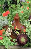 Terracotta Hen in a Garden Plot