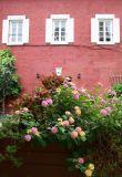 Flower Box & NYU's Maison Francaise