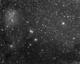Officina Stellare Veloce RH 200 Second Light - IC 446, IC 447, IC 2169, NGC 2245, NGC 2247